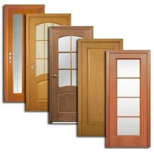 Двери, дверные блоки Сапожка